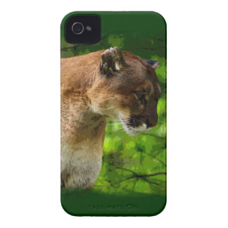 Cougar Mountain Lion Big Cat Art iPhone 4 Cover