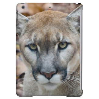 Cougar, mountain lion, Florida panther, Puma 2 Cover For iPad Air