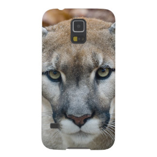 Cougar, mountain lion, Florida panther, Puma 2 Galaxy S5 Case