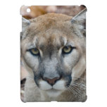 Cougar, mountain lion, Florida panther, Puma 2 Cover For The iPad Mini