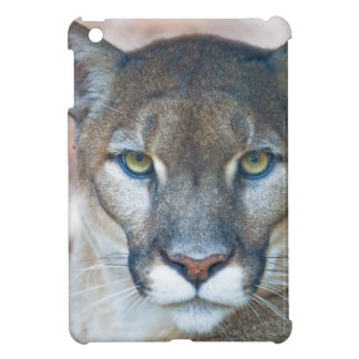 Cougar, mountain lion, Florida panther, Puma 2 iPad Mini Cases