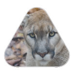 Cougar, mountain lion, Florida panther, Puma 2 Bluetooth Speaker