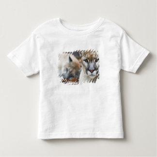Cougar, mountain lion, Florida panther, Puma 2 Shirt
