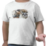 Cougar, mountain lion, Florida panther, Puma 2 T-shirts