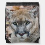 Cougar, mountain lion, Florida panther, Puma Drawstring Bag