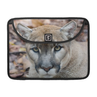 Cougar, mountain lion, Florida panther, Puma Sleeves For MacBook Pro