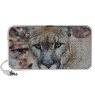 Cougar, mountain lion, Florida panther, Puma iPod Speakers