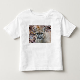 Cougar, mountain lion, Florida panther, Puma T Shirt