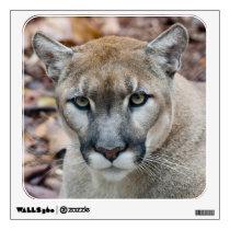 Cougar, mountain lion, Florida panther, Puma Wall Decal