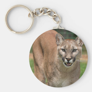 Cougar, mountain lion keychain