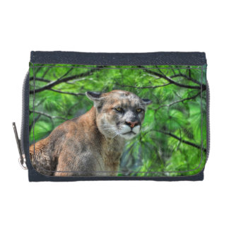 Cougar Mountain Lion & Summer Pine Wildlife Image Wallets