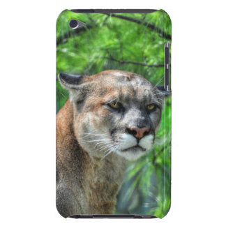 Cougar Mountain Lion & Summer Pines iPod Touch Cover