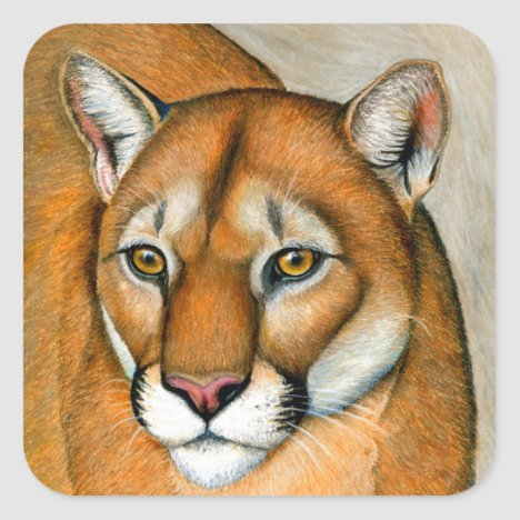 Cougar Mountain Lion Wild Feline Stickers