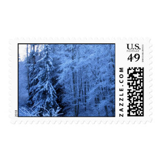 Cougar Mountain Snow Postage