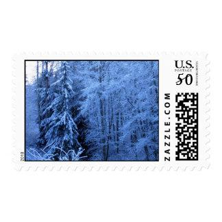 Cougar Mountain Snow Postage