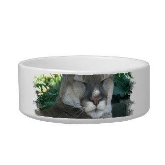 Cougar Pet Bowl Cat Food Bowl