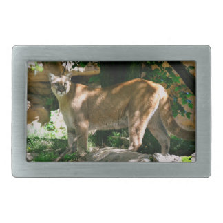 Cougar Photo Belt Buckle