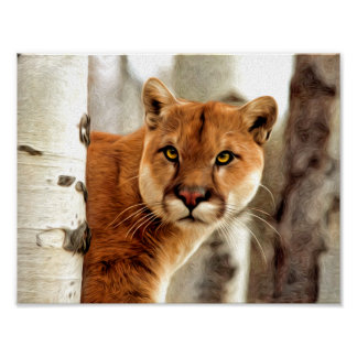 Cougar Photo Painting Poster