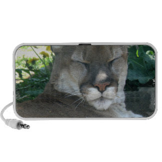 Cougar Portable Speakers