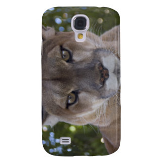 Cougar Pounce iPhone 3G Case Samsung Galaxy S4 Cover
