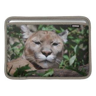"""Cougar Predator 11"""" MacBook Sleeve"""