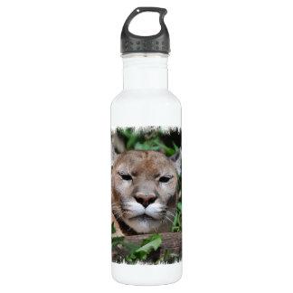 Cougar Predator 24oz Water Bottle