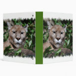 Cougar Predator Binder