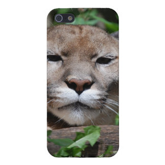 Cougar Predator Cover For iPhone 5