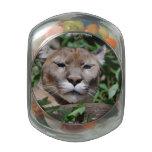 Cougar Predator Glass Candy Jars