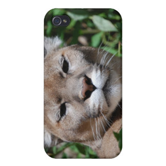 Cougar Predator iPhone Case Covers For iPhone 4