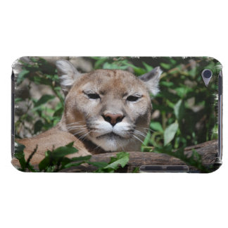 Cougar Predator iTouch Case iPod Touch Cases