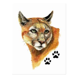 Cougar, Puma, Mountain Lion Animal Tracks Postcard