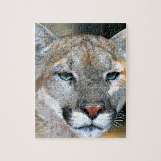 Cougar Puzzles
