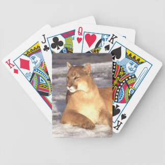 Cougar Rest Bicycle Playing Cards