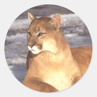 Cougar Rest Classic Round Sticker