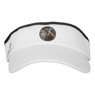 Cougar sitting visor