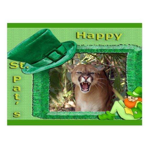 cougar-st-patricks-0008-d postal