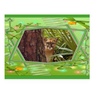 cougar-st-patricks-0056 post card