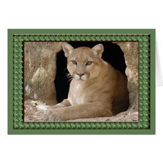 cougar-st-patricks-0065 tarjeta de felicitación