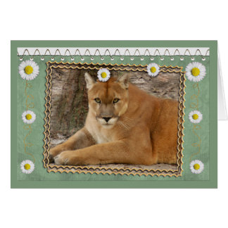 cougar-st-patricks-0076 tarjeta de felicitación