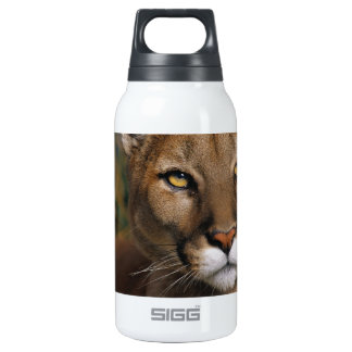 Cougar Stare Insulated Water Bottle
