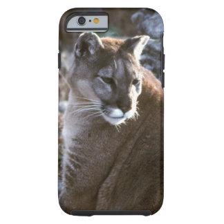 Cougar Tough iPhone 6 Case