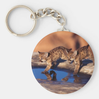 cougar twin cubs keychain