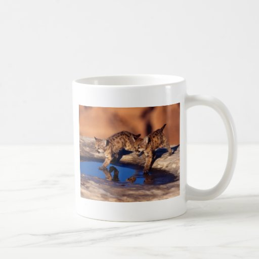 cougar twin cubs coffee mug