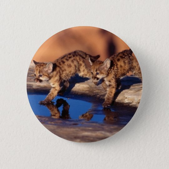 cougar twin cubs pinback button