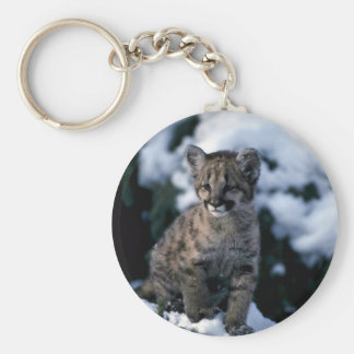 Cougar-young cub in snowy tree basic round button keychain
