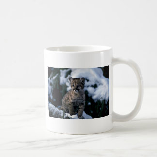 Cougar-young cub in snowy tree classic white coffee mug