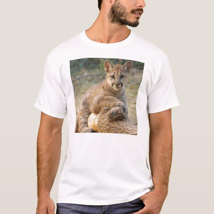 cougarCub4-10x10 T-Shirt