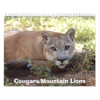 Cougars Calendar, Cougars/Mountain Lions Calendar