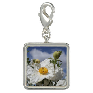 Coulter's Matilija Poppies Charms